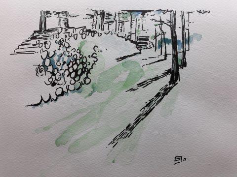 eifelwaldstück